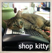 Shop Kitty